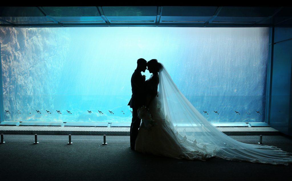 adventure destination wedding