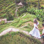 Celebrate Your Wedding In Ubud, Bali